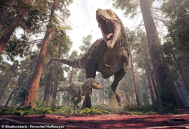 The team chose to ignore juvenile T. rexes (one of which is depicted above), which are both underrepresented in the fossil record and — recent research has suggested — may have lived apart from adults, pursued different prey and behaved almost like a different predator species