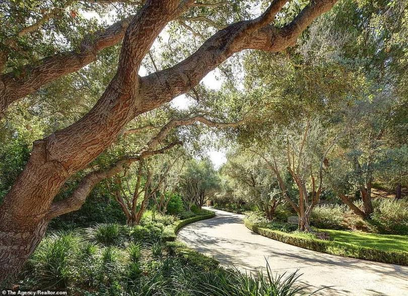 What a life:Either that or the residents can amble along through a long winding stone pathway that leads through a lush wooded area that is hemmed in by low hedges