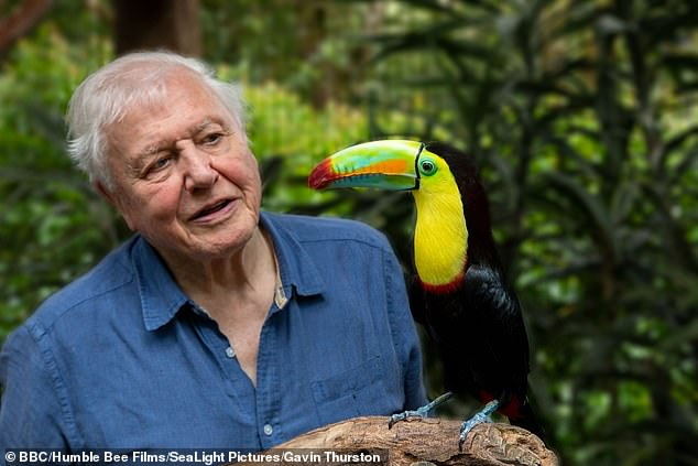 Fellow celebs: Sir David Attenborough also received his COVID-19 vaccine