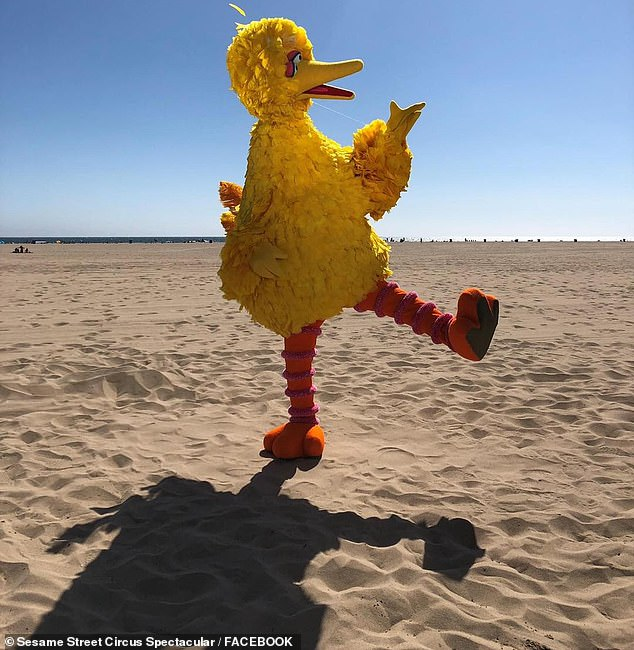 The yellow feathered costume was stolen from the circus' current performance site at Bonython Park in Adelaide north-west.