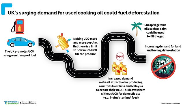 The green transport campaign group claims that the increased demand for used cooking oil from other countries has resulted in an increase in these nations turning to palm oils as a cheaper alternative, which is heavily linked to deforestation