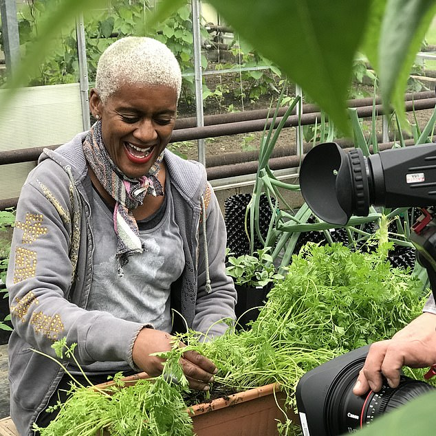 The garden designer, pictured being filmed planting herbs in a window box, says that gardening is an experimental art and you shouldn't be afraid to make mistakes