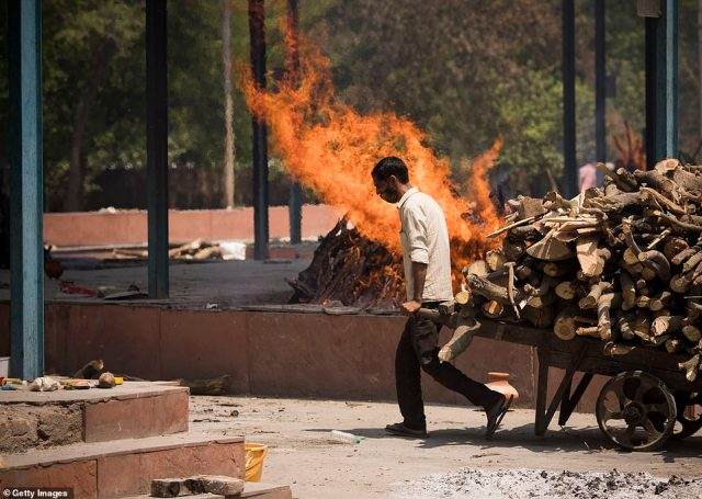 India's healthcare system is buckling under the strain of a vicious second wave. Pictured: A cemetery worker pulls a cart of wooden logs to be used in funeral pyres on Thursday