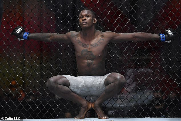 Israel Adesanya is the king of the middleweight division and he is from Nigerian descent