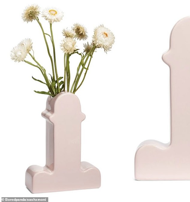 Nordstrom left a shopper, from Dana Point, California, baffled by selling a $600 pink ceramic vase from Memphis that looked like something much more X-rated than planned