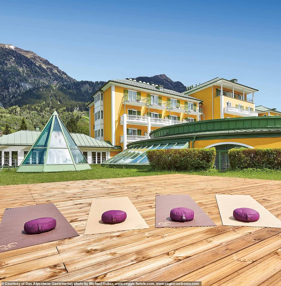 Das Alpenhaus Gasteinertal in Salzburg, Austria, is described as a 'four-star sport, spa, and health hotel' in the book. It's home to a21,500-square-foot (2,000-square-meter) wellness area and a restaurant that 'serves an array of Austrian and Gastein specialties, healthy wellness cuisine, and vegetarian and vegan creations'