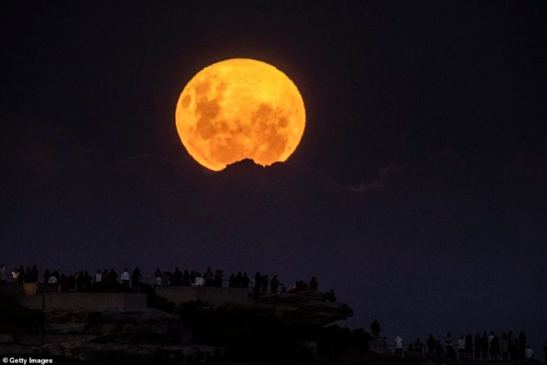 Sydneysiders flocked to Bondi's cliff tops on Tuesday night to catch a glimpse of this April's rare 'Pink' supermoon as it lit up the sky