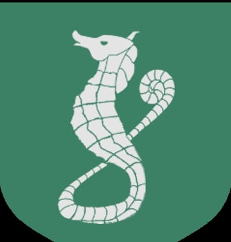 Look familiar? It bore resemblance to the symbol that represents the House Velaryon in the original books