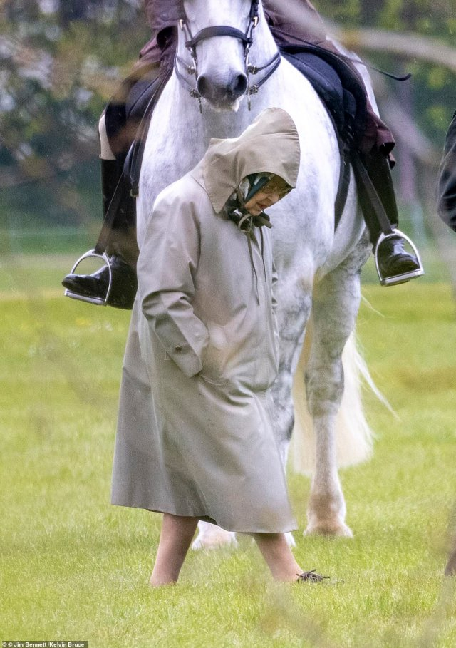The 95-year-old could be seen studying the horses while walking through the grounds of Windsor Estate earlier today