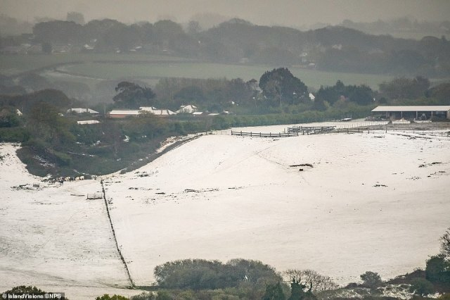 Jamie Russell, of the Isle of Wight Met Service, said: 'It was amazing. I couldn't believe it. I was on the southern side of a big rapeseed field near Shanklin when I noticed something slightly unusual happening in the general direction of Newchurch and headed over there'