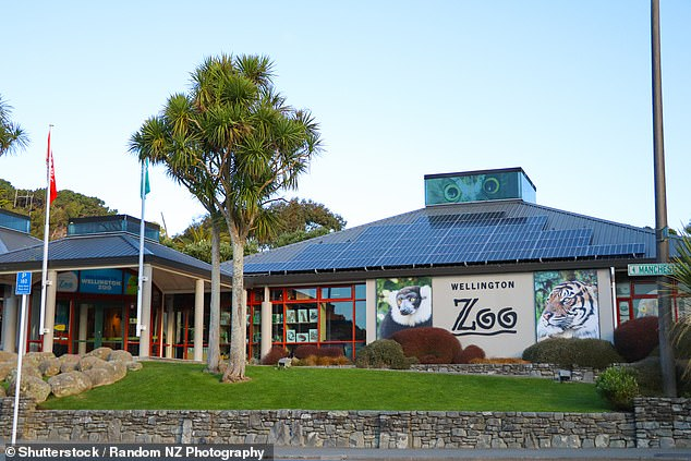 The then-23-year-old stole the monkey from its exhibit at Wellington Zoo (pictured)