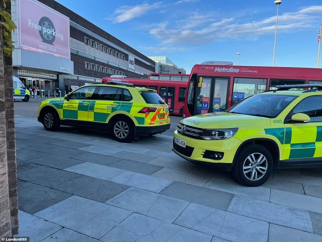 A 21-year-old man has been stabbed to death after a fight broke out inside Brent Cross shopping centre in London on Tuesday evening