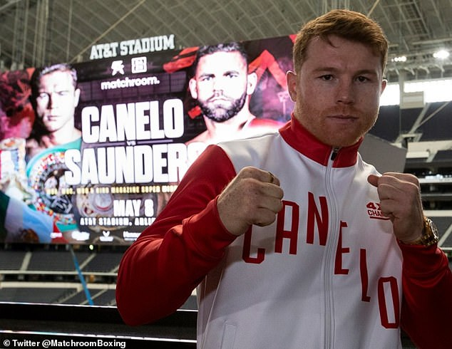 Amir Khan knows what it's like to be knocked out cold bySaul ¿Canelo¿ Alvarez (above)