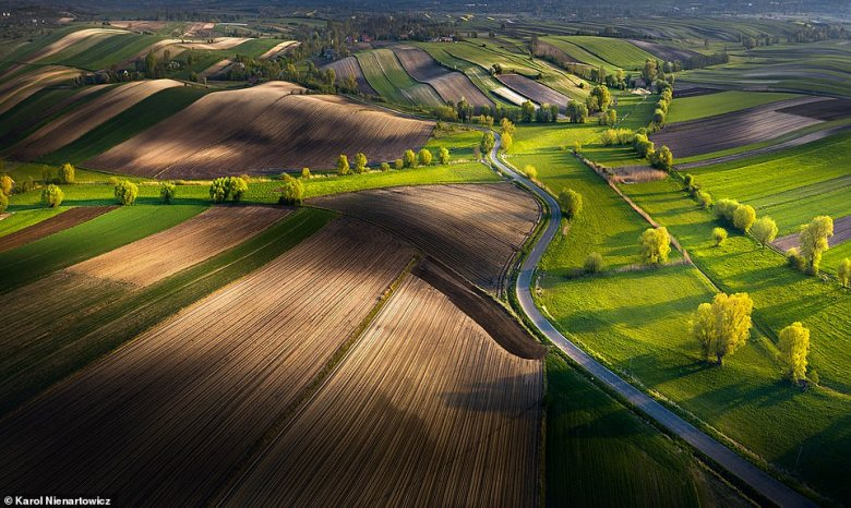 A breathtaking image of Poland's Ponidzie region in the south of the country. According to Wildlife Worldwide, its 'landscape and biological interest are protected in three parks, Nadnidzianski, Szaniecki and Kozubowski, and a number of nature reserves which feature meadows, peat bogs, fish ponds and relict steppe vegetation'