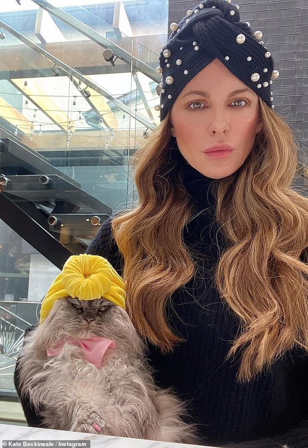 Furry babies: Kate is the mother to two feline friends called Willow and Clive, in addition to a Pomeranian dog called Myf