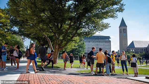Esmail made her remarks during a virtual discussion on stopping anti-Asian American hatred. Cornell's quad is pictured, with its Olin Library just to the right of the large tree