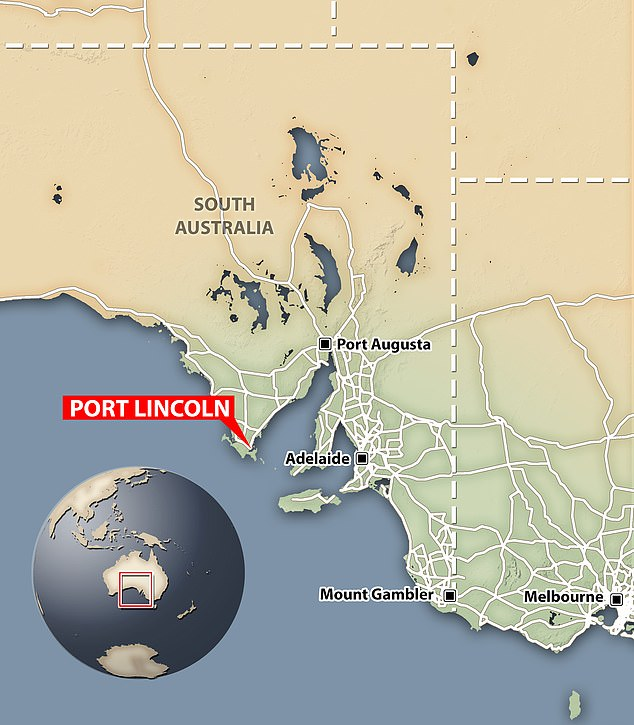 The grizzly scene unfolded in Port Lincoln - a small coastal town west of Adelaide in South Australia