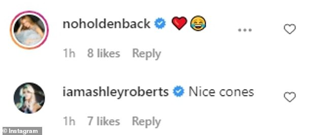 Reaction:Alan's close pal Amanda Holden commented on the photo with a love heart while Ashley Roberts jokingly added: 'Nice cones'