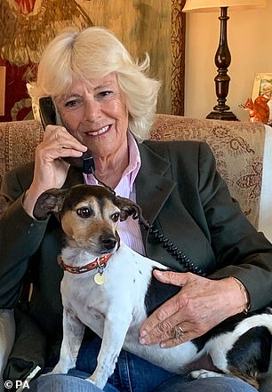 The Duchess of Cornwall has been pictured several times throughout the pandemic, keeping in touch with her and Prince Charles' Scottish home, Birkhall, via a wired handset (pictured in April last year)