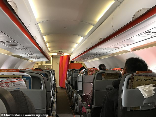 One experienced air traveler said he found the experience entertaining though others on the plane vomited (stock image)