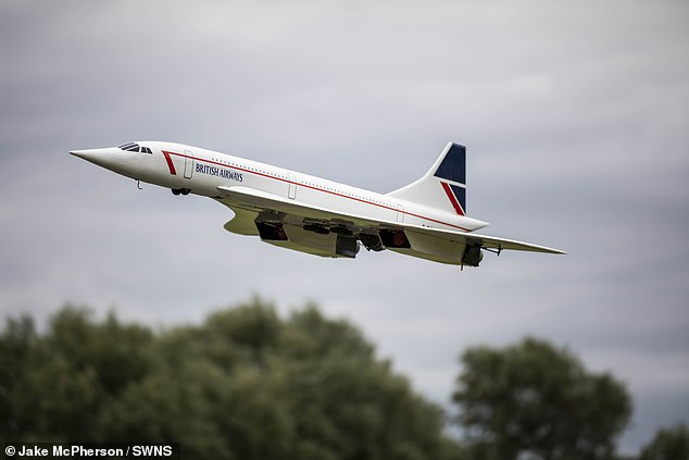 Whoops: The TV presenter, 47, said he was practicing his technique when the 'hideous' and 'awful' crash happened (file image of a model plane)