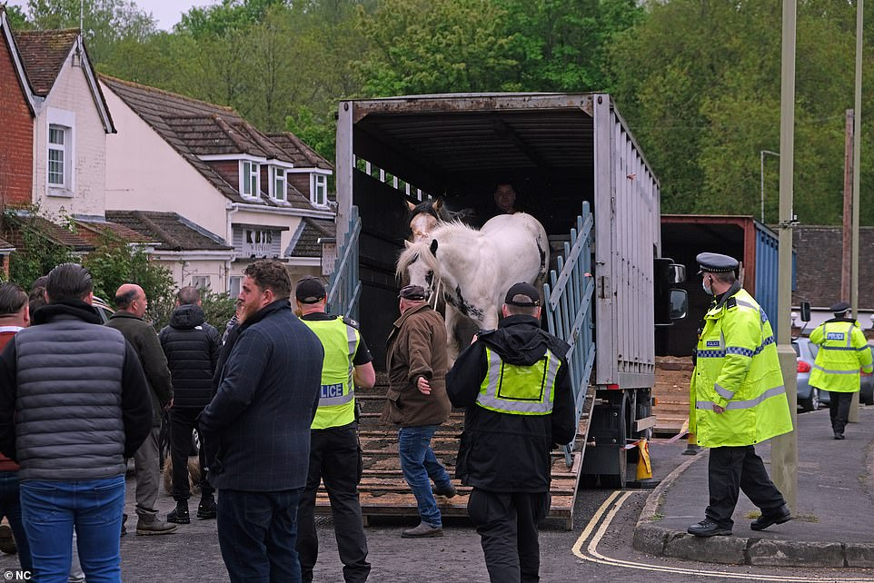 The horse fair is a historic event and is one of the main horse events in the travellers' calendars