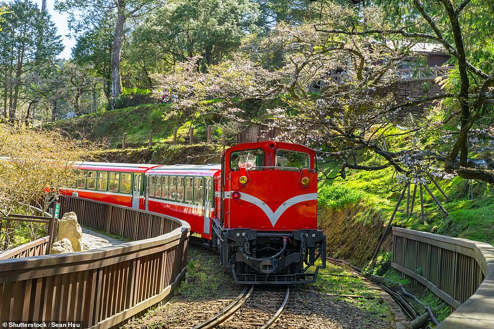 The stunning Alishan Forest Railwaywas constructed more than 100 years ago and climbs to 2,405 metres (7,890m), taking in the famous Dulishan Loop, where the track spirals through and around a vast rock formation