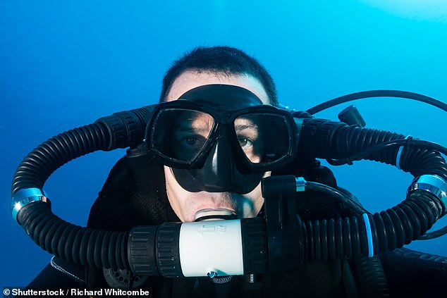 """'We found that semi-aquatic anoles exhale air into a bubble that clings to their skin,' explained evolutionary biologist Chris Boccia of the University of Toronto. 'The lizards then re-inhale the air, a manoeuvre we've termed """"rebreathing"""" after the scuba-diving technology [pictured]'"""