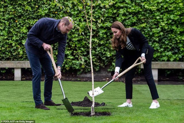 Getting stuck in: The Duke and Duchess of Cambridge took part in a tree planting ceremony during their visit