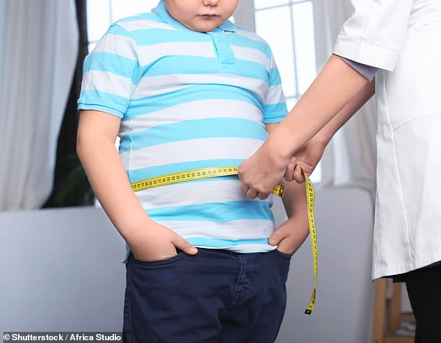 A mutation in the so-called 'fat gene' has been discovered, which makes children pile on an extra 37 pounds (16.7kg) by the time they reach 18 (stock image)