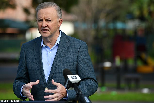 Apology:Husar said if she did not receive an apology from Labor leader Anthony Albanese (pictured) she would sue the party for sexual harassment and discrimination, the Sydney Morning Herald reported in May