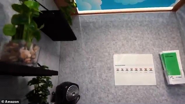 Inside there are leaflets and a fan to cool down employees, plus a few plants on a shelf and a computer to watch relaxation videos. The top of the booth is painted as a blue sky with clouds