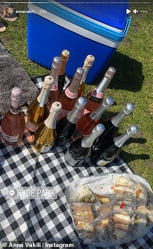 Bottom's up! The pharmacist appeared to be having a great time as she shared a snap of the plethora of alcoholic drinks she and her pals brought along to the al fresco lunch