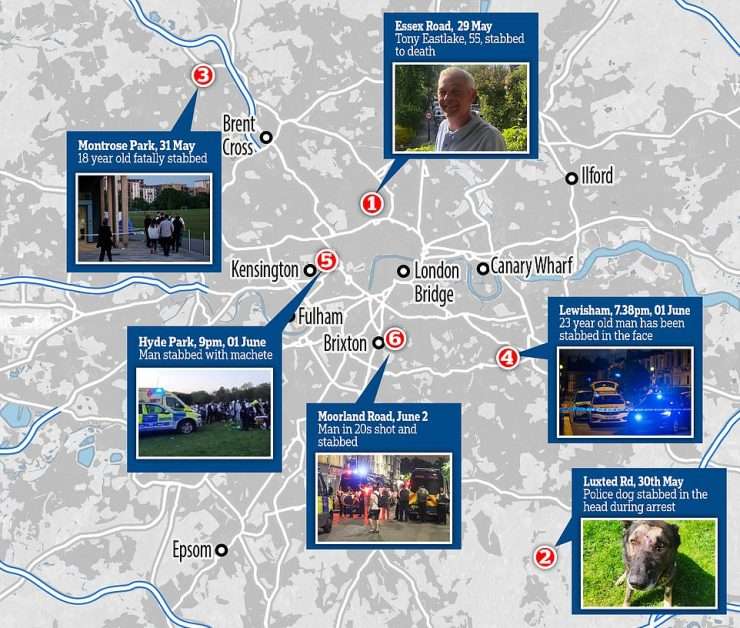 It comes amid a spate of carnage in the capital, which saw a popular 55-year-old florist stabbed to death in Islington, a man chased through London's Hyde Park by a gang wielding machetes, and a 15-year-old boy stabbed in Chelsea harbour- among other grizzly attacks