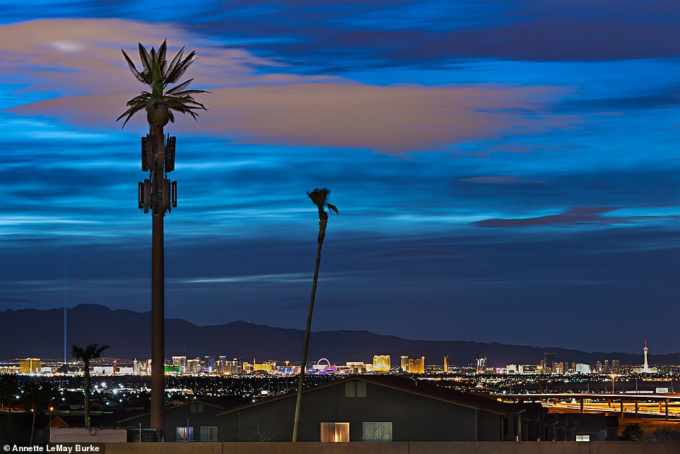Annette took the above image in Henderson, Nevada. She writes: 'While the quirky disguises can be entertaining to look at, the towers present privacy and environmental concerns. The often-farcical pole disguises belie the equipment's covert ability to collect all the personal data transmitted from our cell phones'