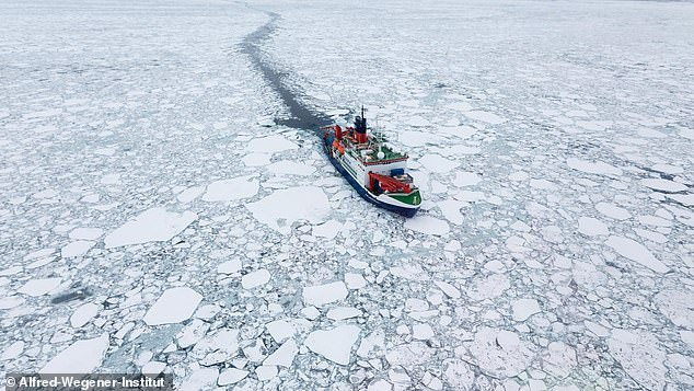 Even if industrialized nations curb carbon emissions, researchers say, ice that has years to freeze will become a thing of the past by the middle of this century. Pictured: The research vessel Polarstern drifting in Arctic sea ice