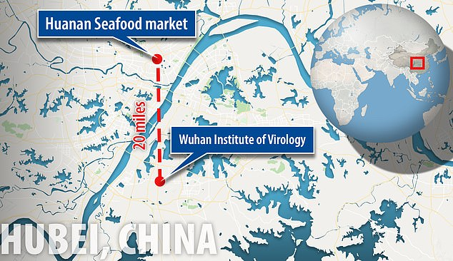 The Wuhan Institute of Virology is about 20 miles from the Huanan Seafood Market where the first coronavirus cases are reported to have occurred