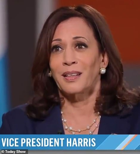 Kamala Harris lashed out when pushed on why she hasn't visited the border. 'I haven't been to Europe. And I mean, I don't understand the point that you're making¿
