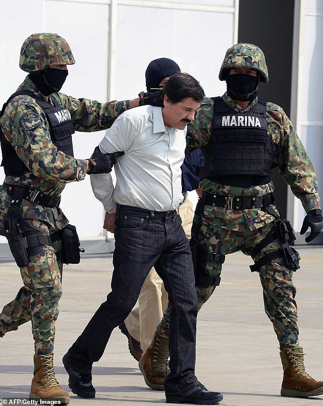 Her husband, Joaquin 'El Chapo' Guzman, is seen in February 2014 after he was presented before the Mexican press, as proof of his arrest. He would later escape - allegedly with his wife's help