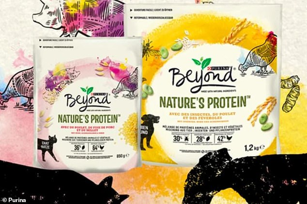 Big name brands like Nestle Purina and Mars have recently joined the move by using dried black soldier fly larvae