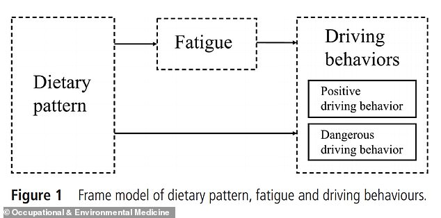 Drivers dietary pattern effects both their level of fatigue and driving behaviors, while fatigue can likely effect drivers behaviors as well