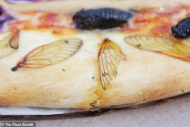 They even baked cicada wings into the crust. They said:'Opinions of the pizza range from absolutely delicious to...well...uh...yeah...'
