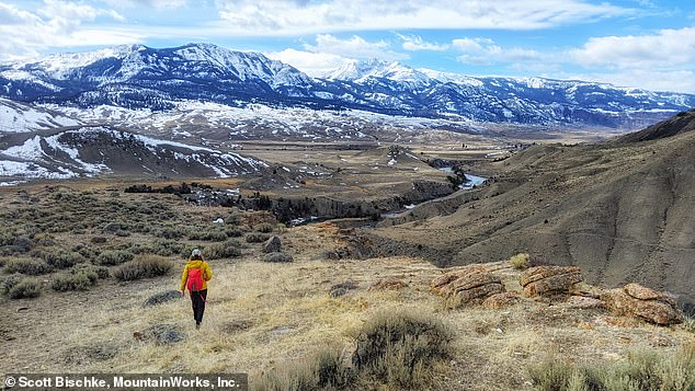 The Greater Yellowstone Area, which is one of the last and largest remaining intact ecosystems in the northern temperate zone, is being threatened by climate change, a new report finds