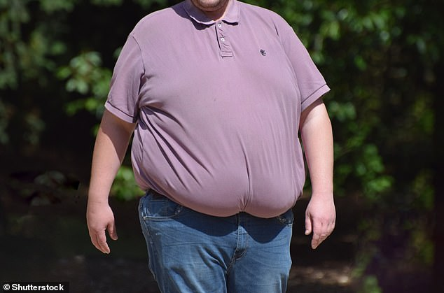 Being overweight or obese results in about 2.8 million deaths a year, according to the World Health Organisation (WHO). Pictured, a morbidly obese man