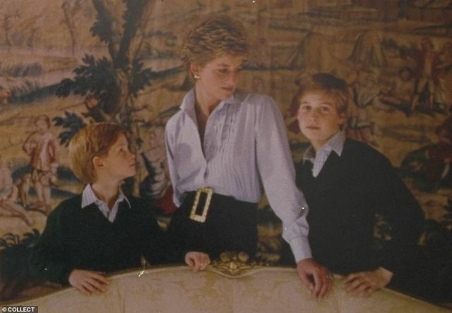 The bronze statue, which was sculpted by Ian Rank-Broadley and is 1.25x life size, appears to be reminiscent of the outfit Princess Diana donned on the front of her 1993 Christmas card with sons Prince Harry and Prince William (pictured)