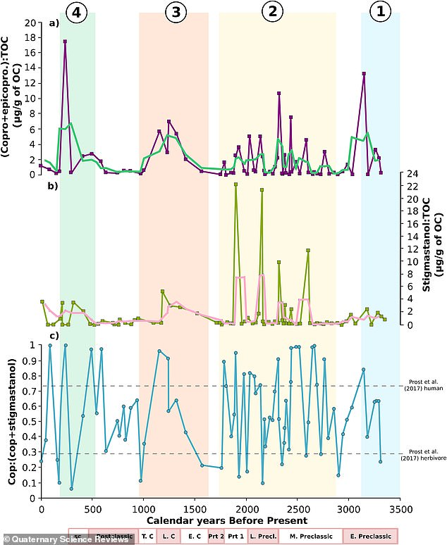 Purple highlights concentrations of fecal matter found in sediments over the 3,300-year time period and blue shows how the population varied at those times