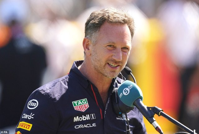 Red Bull chiefChristian Horner said Hamilton put Verstappen's life in danger at Silverstone