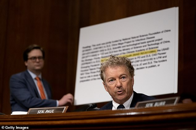 Rand Paul is seen earlier on Tuesday in the Senate, during the hearing of theHealth, Education, Labor, and Pensions Committee