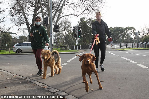 This would spark a technical recession and see Australia suffer recessions in consecutive calendar years for the first time since the early 1980s, following the downturn of early 2020 sparked by the national Covid lockdowns (pictured are dog walkers in Melbourne on Thursday)
