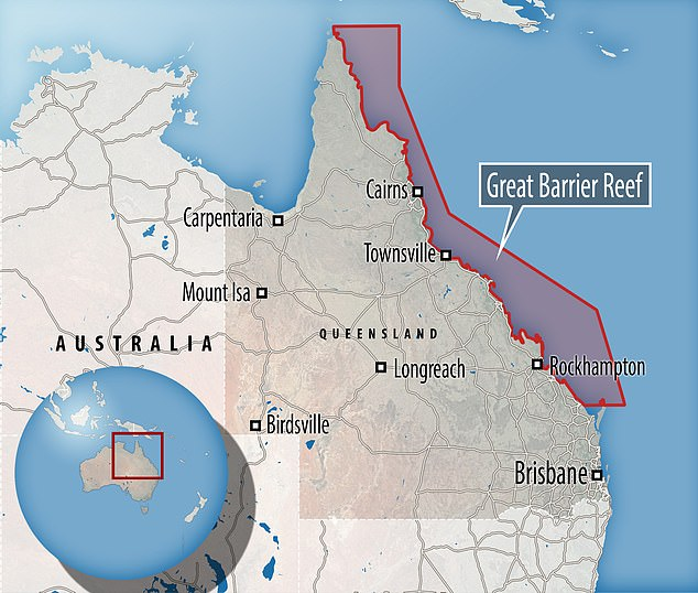 The Great Barrier Reef stretches for 1,429 miles along the coast of Australia and although massive and is one of the seven wonders of the natural world